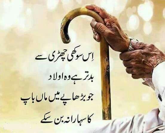 Post By Engr Hashim Siddiqui