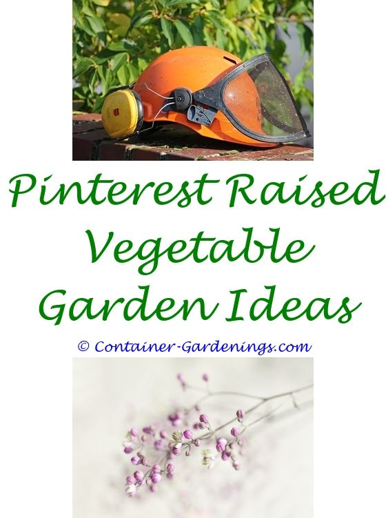 Home Garden Equipment | Garden ideas, Vegetable garden and Gardens