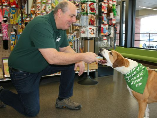 Grand Opening Planned For Chester Pet Store Pet Supplies Plus