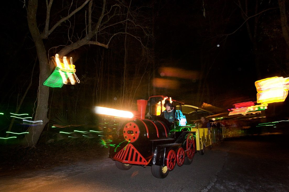 James Island Lights Alluring Young Visitors Love Riding The Train At The Holiday Festival Of Design Ideas