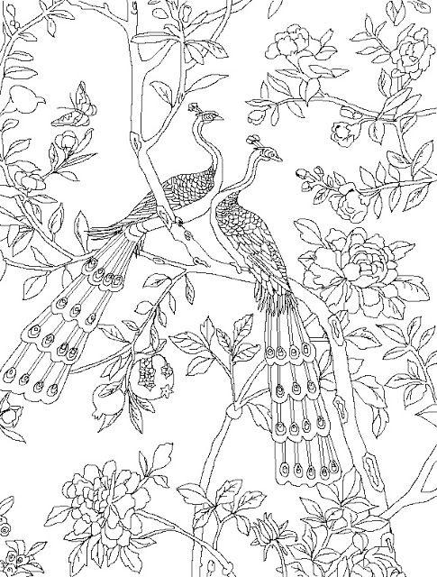 Coloring Page World: Paris Peacocks (Portrait) | Art | Pinterest ...