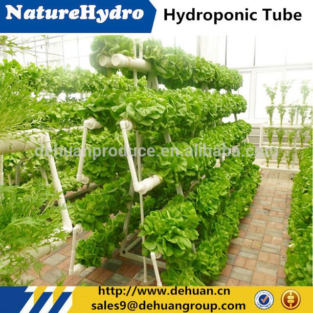 Source Hydroponics Growing Systems Agriculture Greenhouse Vegetables  Growing System On M.alibaba.com