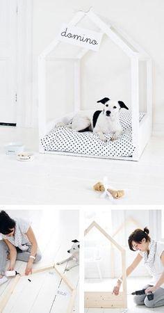 67a3431d2333 Pompom, the shop dog at Le Petit Atelier in Paris, spends his days dozing