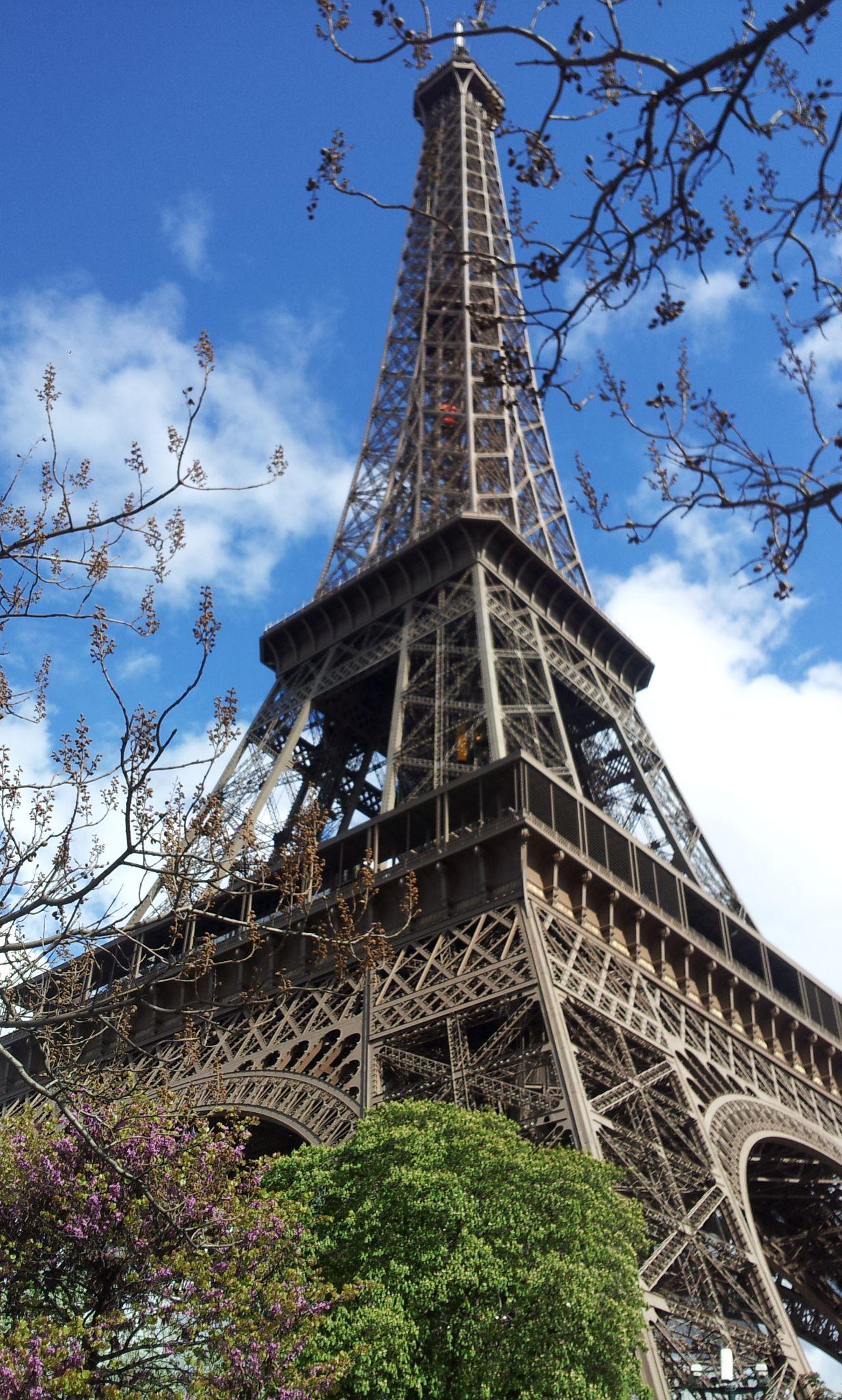 Torre Eiffel na primavera