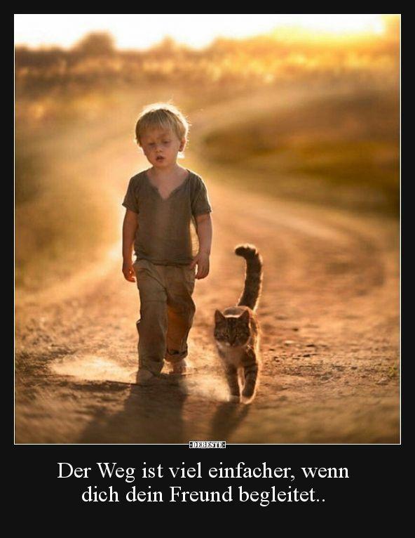 Der Weg ist viel einfacher, wenn dich dein Freund.. | Lustige Bilder, Sprüche, Witze, echt lustig #whatkindofdog