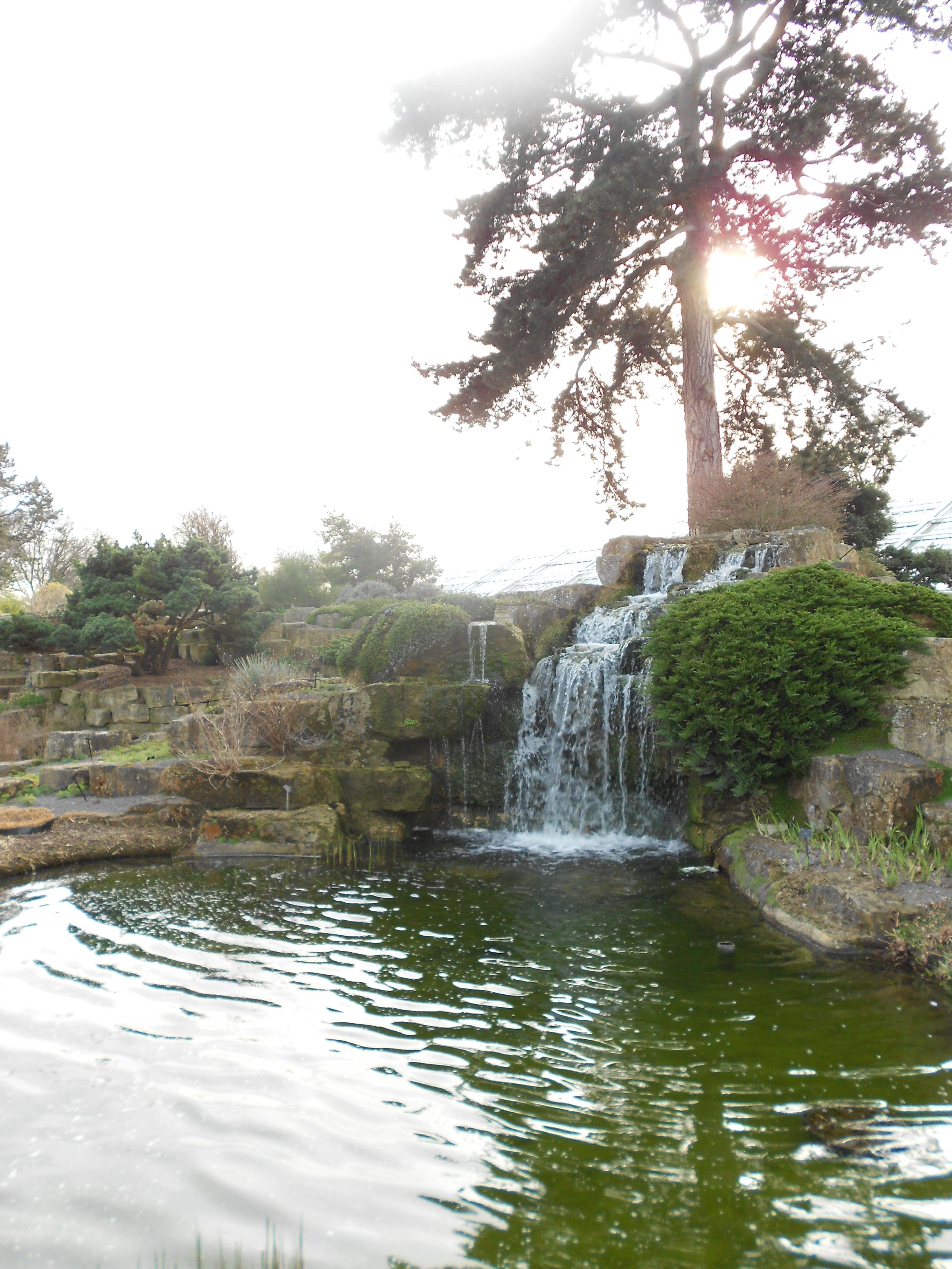 16bf0e000e26c259b08ee249e3361b59 - Getting To Kew Gardens By River