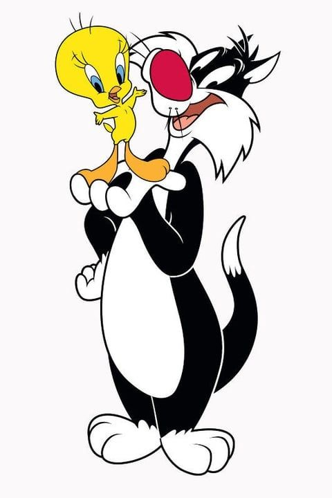Titi & Grosminet | Looney tunes cartoons, Looney tunes characters, Sylvester the cat