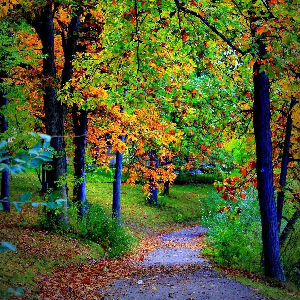 Rogers Park, Valparaiso, Indiana Lakewood park