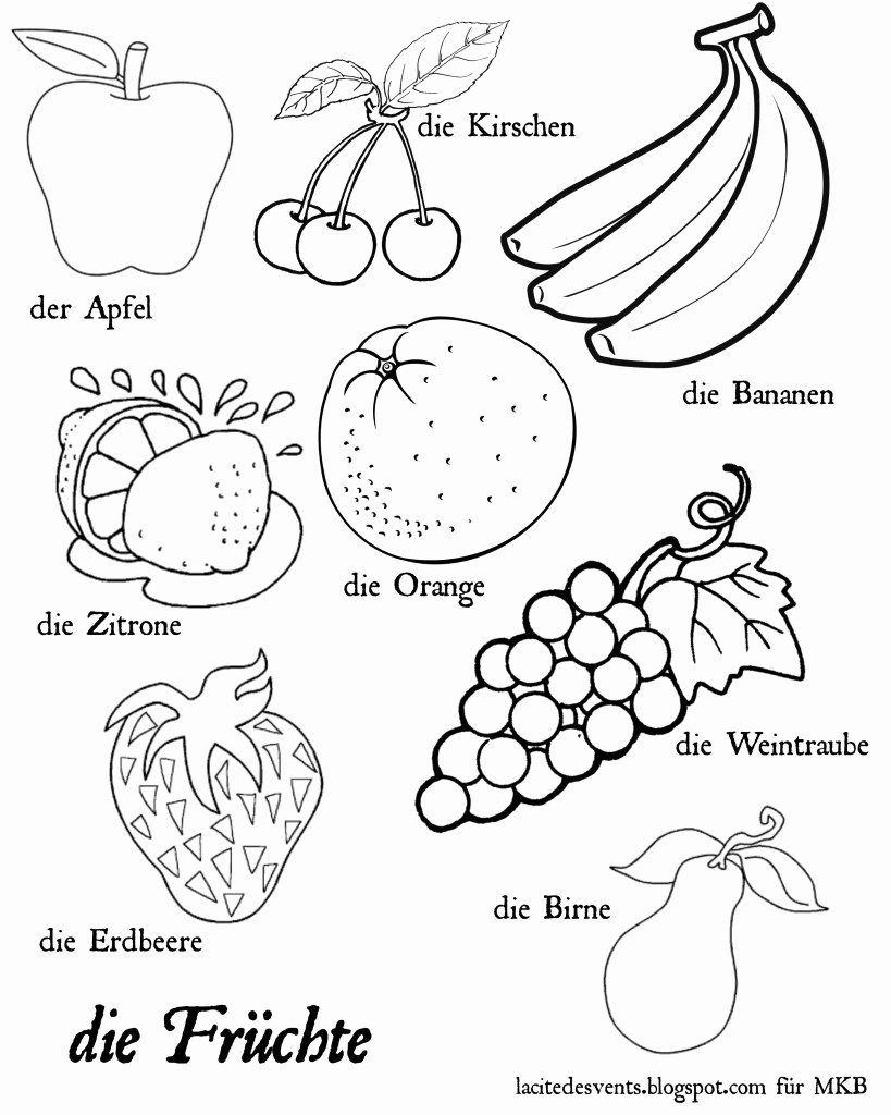 Vegetable Coloring Pages Preschool Luxury Multilingual