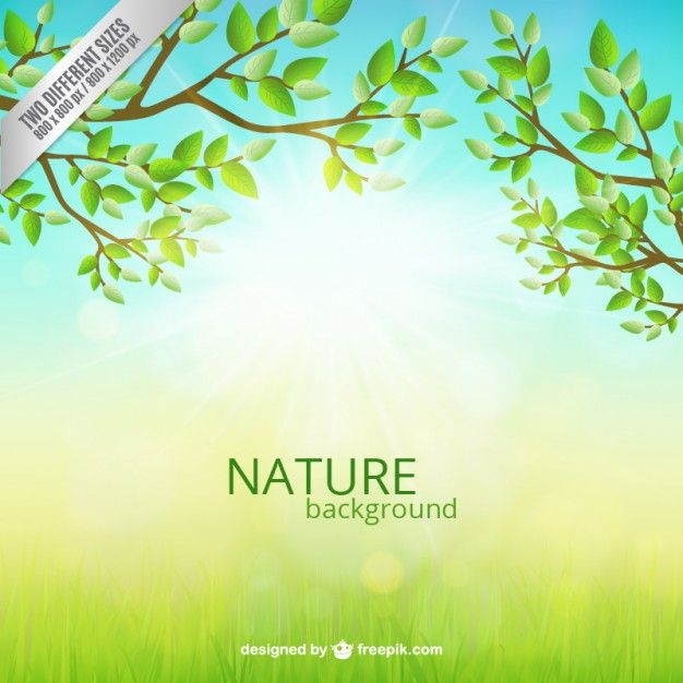 Download Nature Background For Free Nature Backgrounds Backgrounds Free Nature