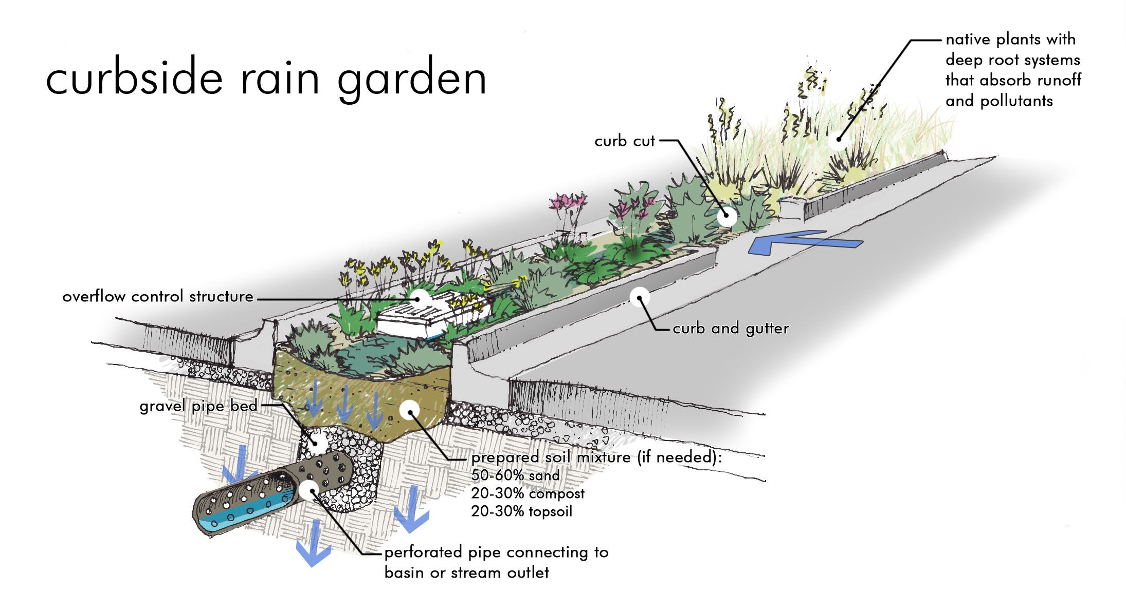 Here Is What A Raingarden Would Look Like In A Parking Lot