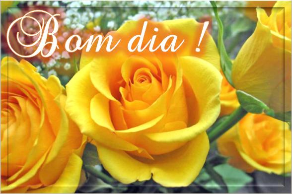 Rosas Amarelas - Bom Dia!