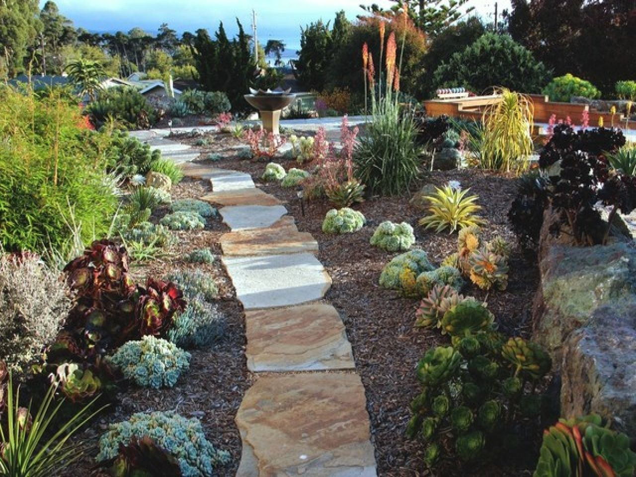 Landscaping with succulents succulent landscape gardens for Garden design with succulents
