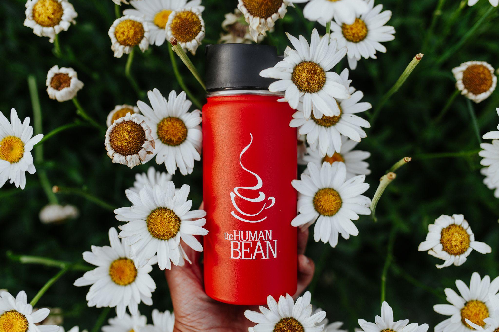 16 oz. Hydro Flask with Hydro Flip™ Tea latte, Flask