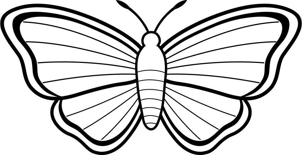 Galería de imágenes: Dibujos de mariposas para colorear | Ideas for ...