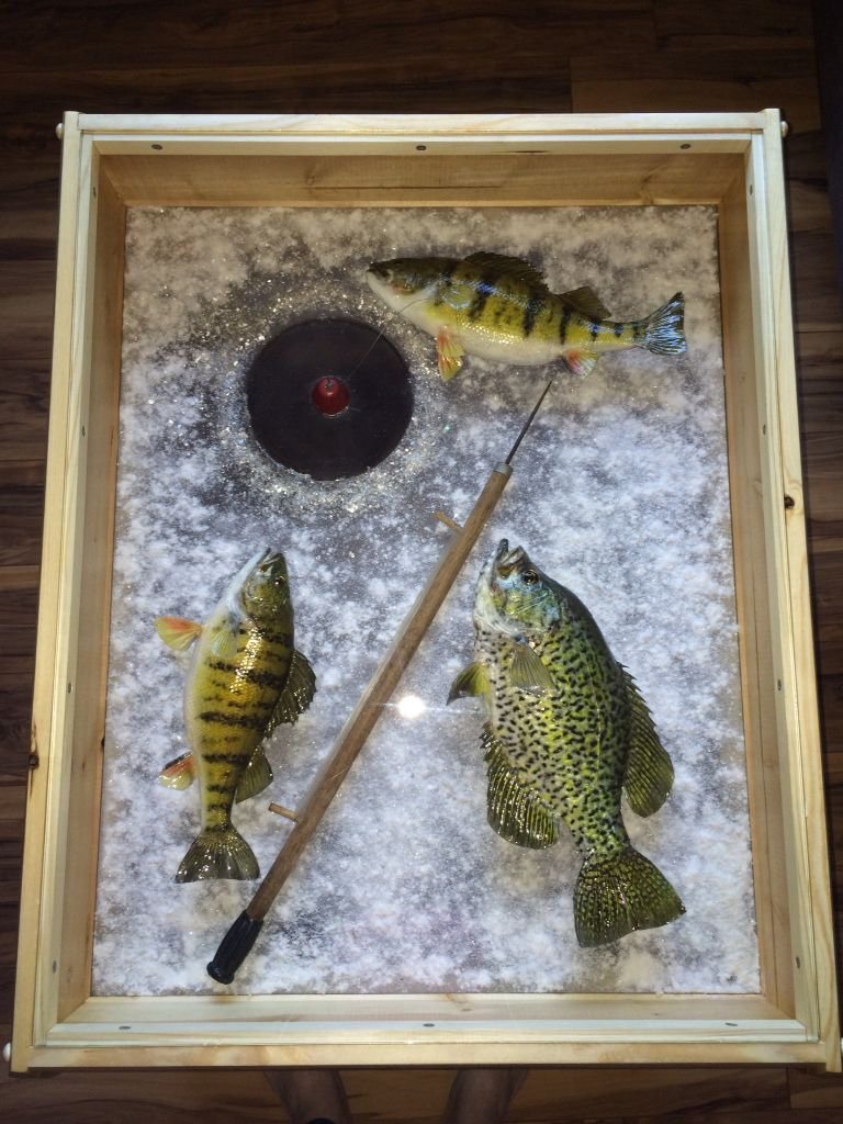 Ice Fishing End Table Taxidermy decor, Hunting decor