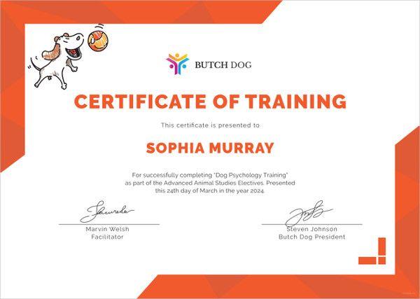 10 Training Certificate Templates Free Word Pdf