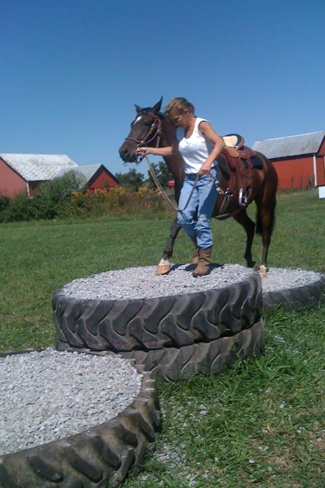 Chilinquieto | Equine Obstacle Challenges | Pinterest | Pista de ...