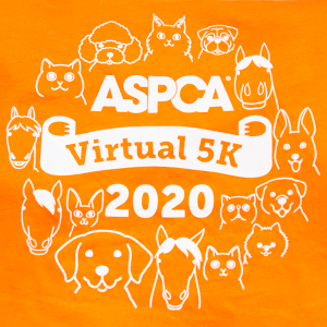 2020 Aspca Virtual 5k In 2020 Aspca Virtual 5k How To Raise Money