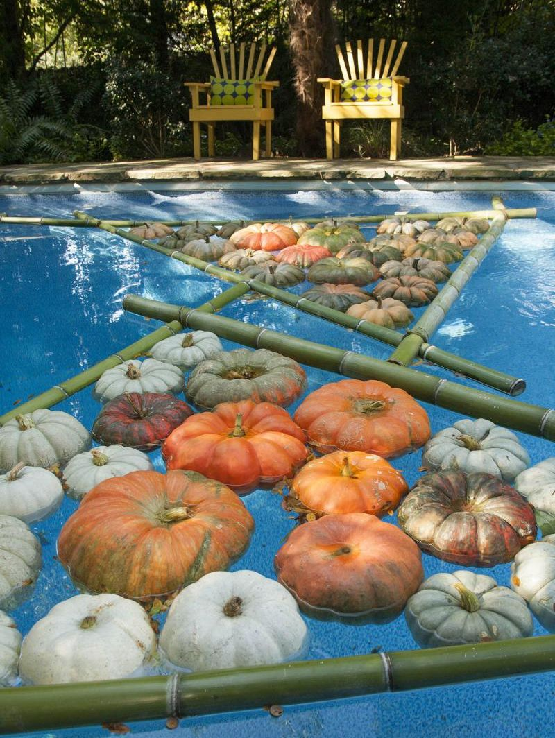 Halloween pool decorations haywardpinyourpool pool for Garden pool party ideas