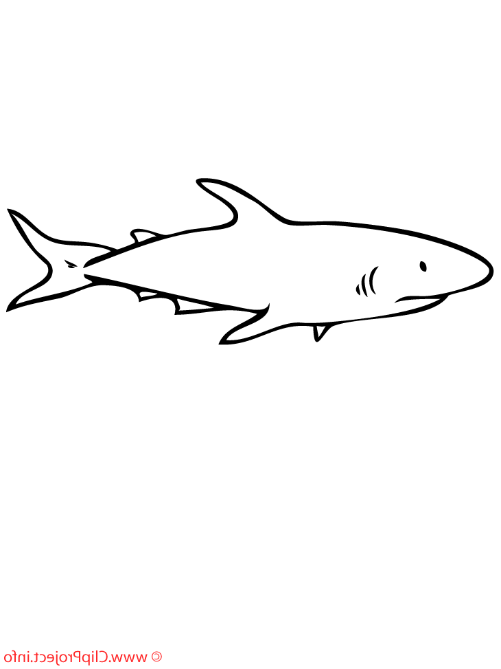 Sharks With Sharp Tailed Coloring Pages For Kids Ew1 Printable Sharks Coloring Pages For Kids Shark Coloring Pages Shark Pictures Shark
