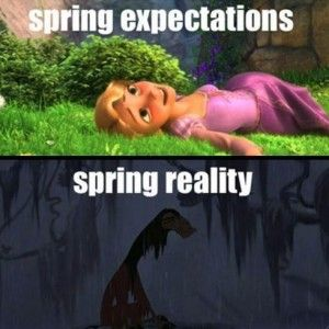 Disney Memes Do It Better | Cambio Photo Gallery (happy SPRING to all)
