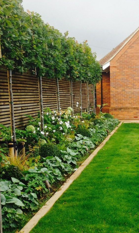 25 Smart And Stylish Garden Screening Ideas #gardenlandscaping