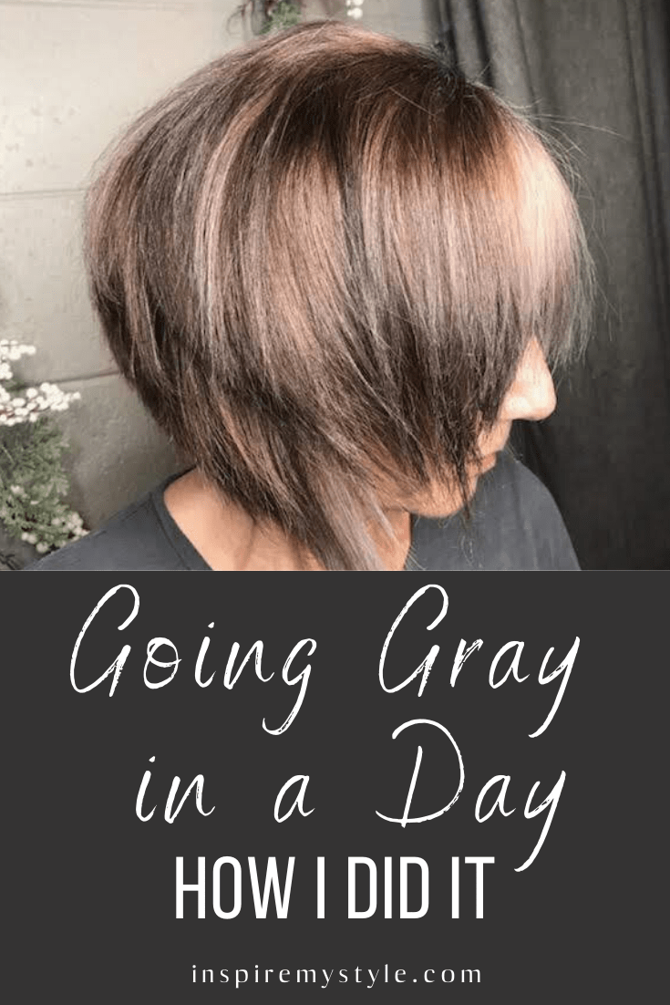 How To Go Gray Quickly My Experience Going Gray In A Day In 2020 Hair Color Remover Gray Hair Growing Out Transition To Gray Hair