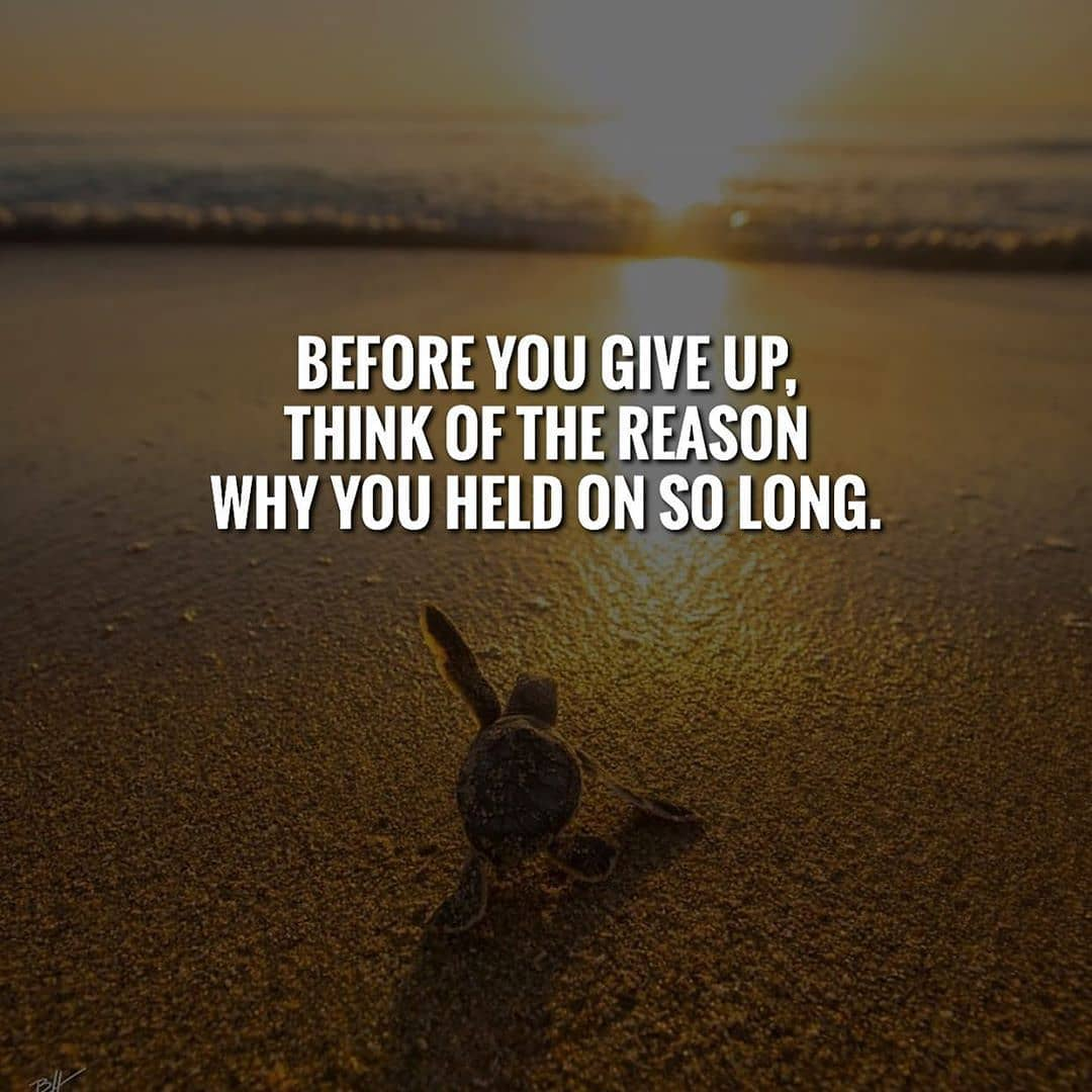 Before you give up remember where you want to go. Don't give up. - - - #millionairedivision #motivat...