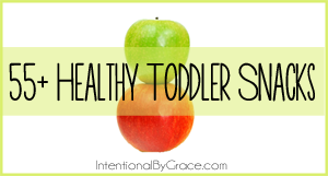 55+ Toddler Snacks (You and) Your Toddler Will Love - Intentional By Grace