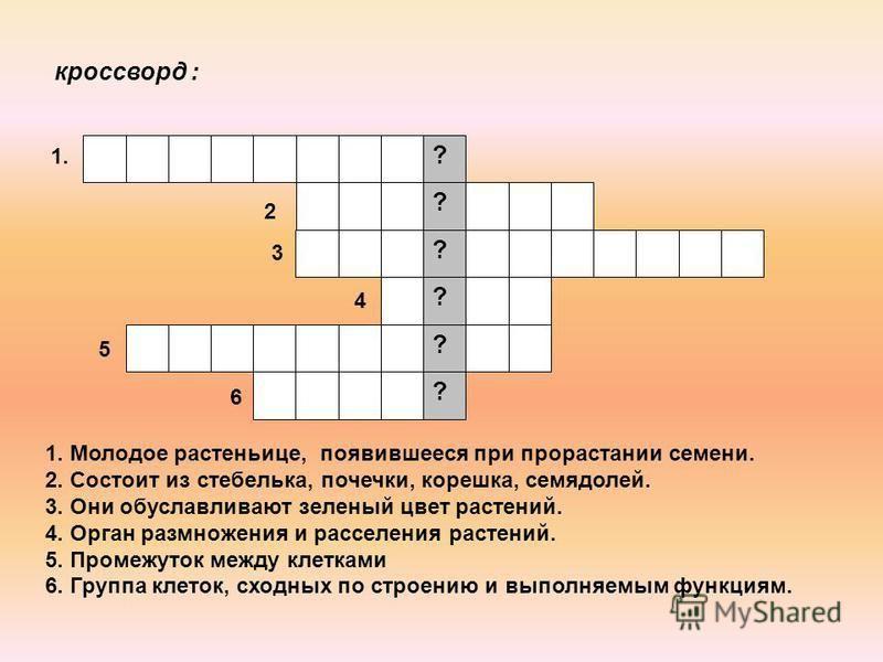 Голицынский 7 издание читать онлайн учебник.