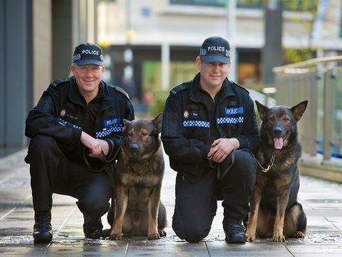 Leading West Midland Police Handlers And Their K9 Dogs Pc Paul