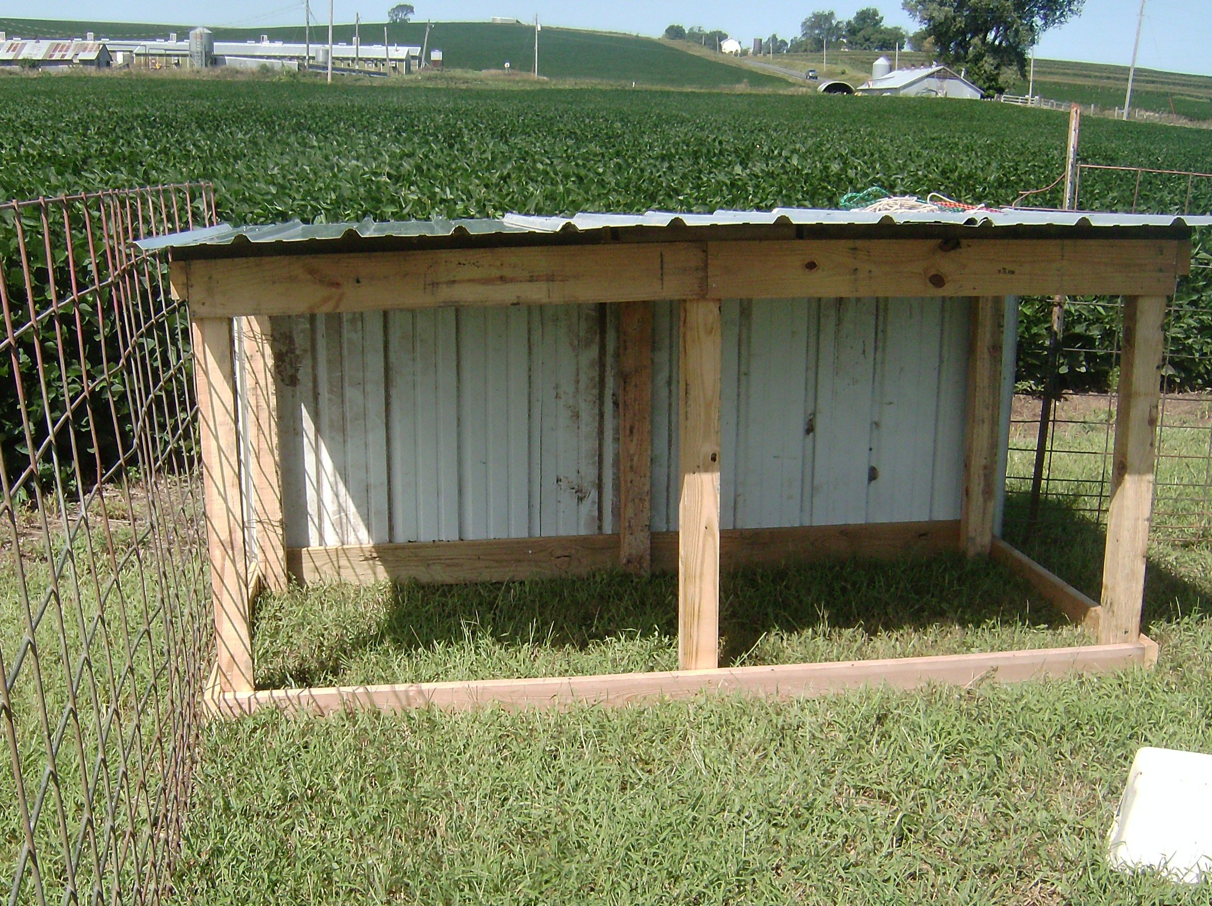 Cheap goat shelter new goat shed and weaning kids for Farm shed ideas