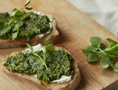 Before garden peas are fully formed, these wonderful leaves or shoots can be plucked from the plant in early spring. They are great made into a pesto and paired with creamy, lemony flavors as we do here.