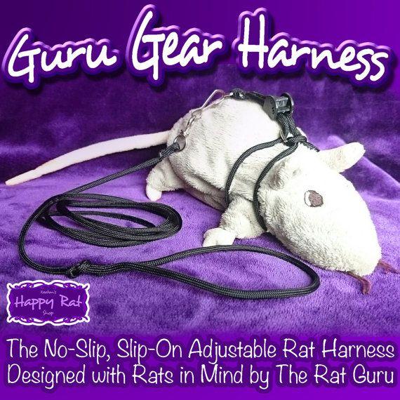 Purple Rat Harness - Switch Wiring Diagram