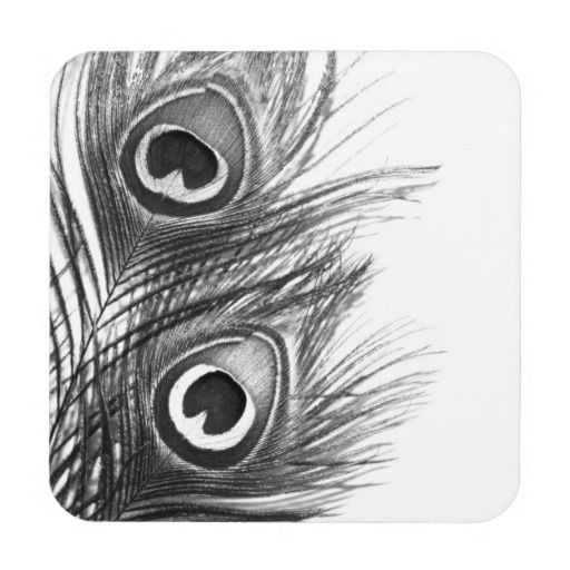 Black And White Peacock Feather Coasters Zazzle Co Uk Feather Tattoo Black Peacock Feather Art Black And White Sketches