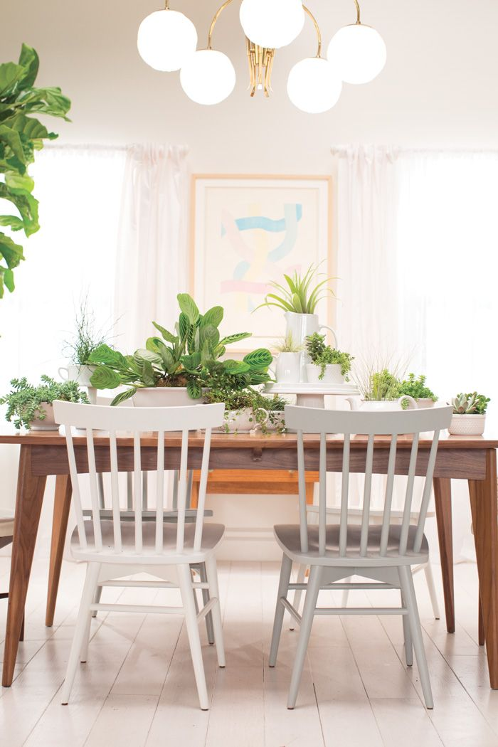 Living Rooms Emily Henderson Shows How To Use Plants As A Centerpiece Tablescape We Used Cake