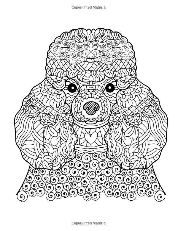Dog Lover Adult Coloring Book Best Gifts For Mom Dad Friend Women Men And Adults Everywhere Beautiful Dogs Stress Relieving Patterns Gina