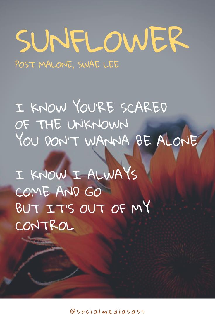 Sunflower - Post Malone,Swae Lee - Lyrics. Spider-Man Into The Spider-Verse   #musiclyrics #lyrics #postmalone #sunflower #postmalonewallpaper
