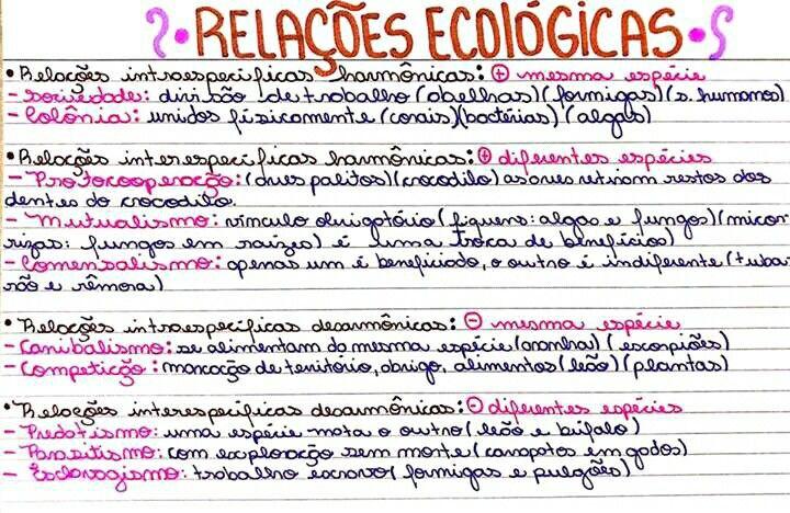 Resumo De Ecologia Relacoes Ecologicas Relacoes Ecologicas Planos De Estudo Enem Como Estudar