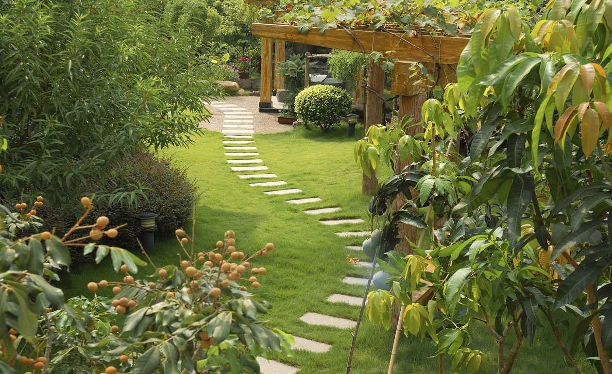 jardines modernos cesped granito paisajismo camino mundo planteado diseo de jardn de la cama diseo de jardines en casa ideas de diseo de