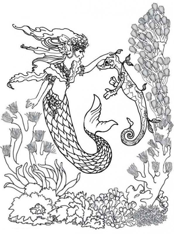 Majestic Mermaid And Seahorse Difficult Adult Coloring Pages Free