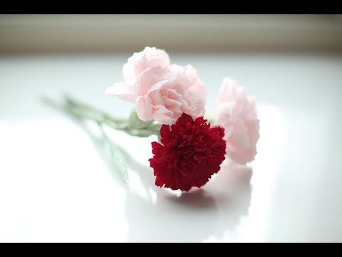 How to make red carnation paper flower from crepe paper craft how to make red carnation paper flower from crepe paper craft tutorial 2 youtube crepe paper flowers pinterest crepe paper crepe paper crafts mightylinksfo