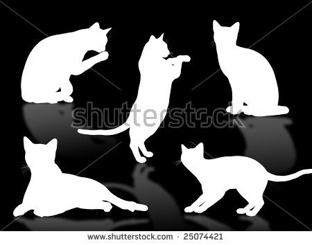 black cat silhouette in different poses and attitudes