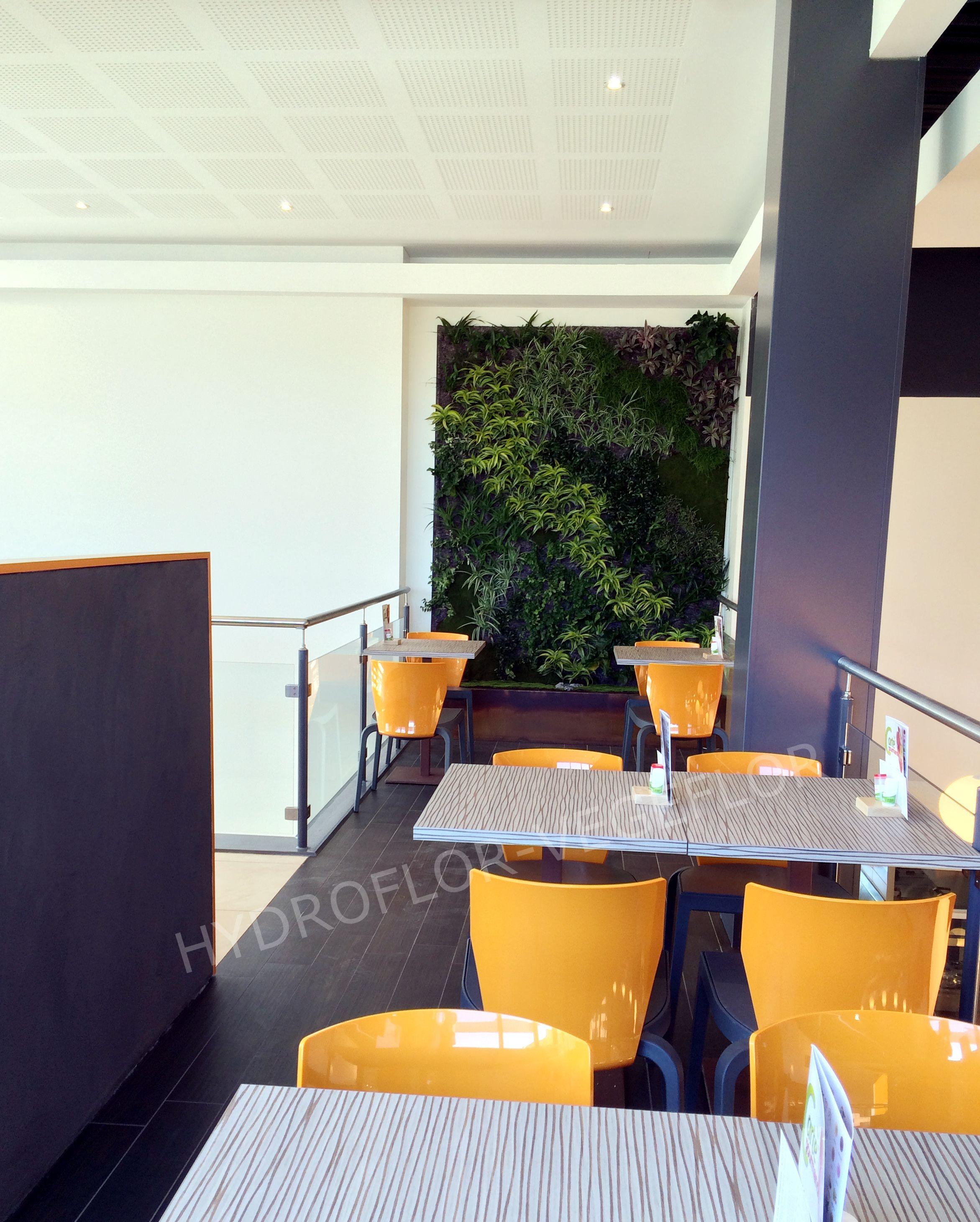 Mur végétal dans un nouveau restaurant crescendo à cahors