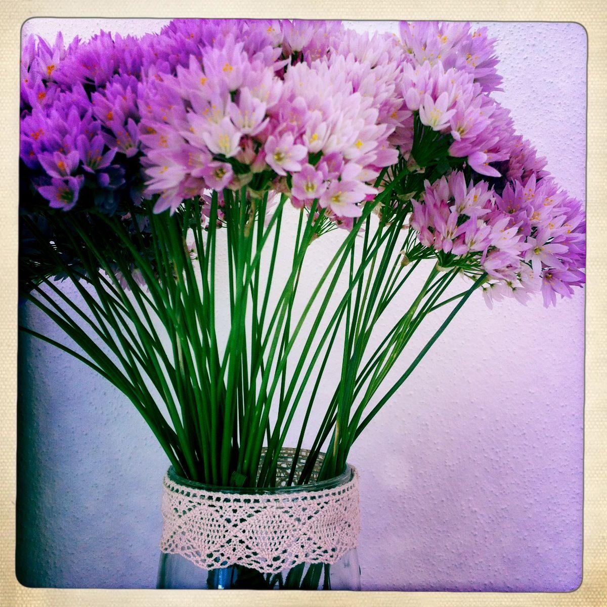 Flor de ajo Ibiza