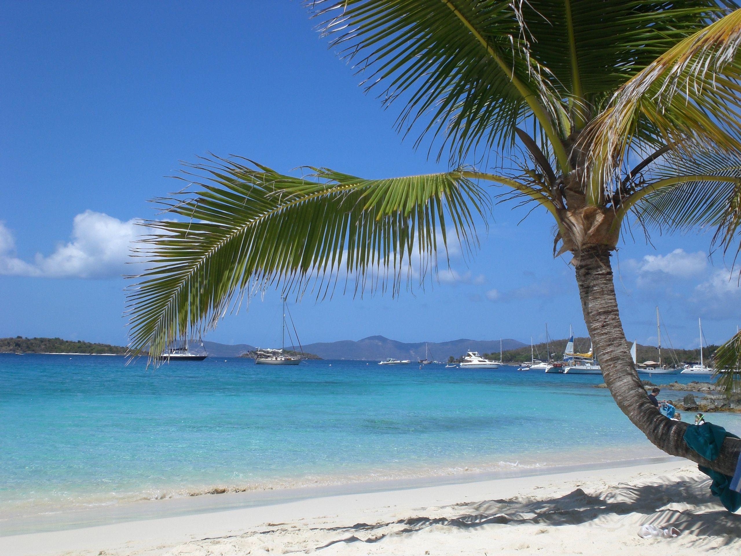 peyton boswell virgin islands