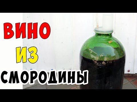 Как сделать вино из черной смородины в домашних условиях ...