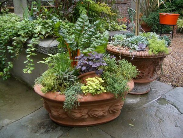 High Quality Great Mix Herb Garden Patio Container Design