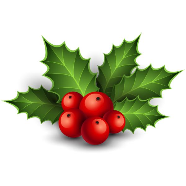 Holly | Christmas Emoticons for FB | Christmas emoticons